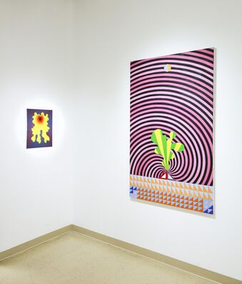 Altered States: A Psychedelic Legacy, installation view