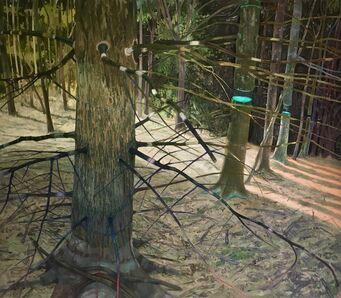 Ray Cicin, 'Edge of the Spruce Wood', 2019