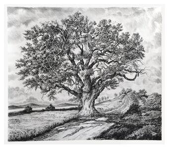 Rick Shaefer, 'Single Large Oak near River', 2018