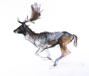 Mark Adlington, 'Running Buck', 2007