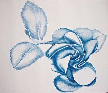 Giacomo Porzano, 'Blue Rose', 1972