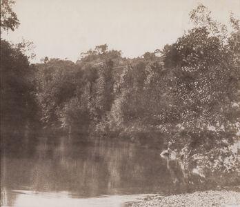 Charles Nègre, 'Le Muy, plan d'eau dans la forêt', 1852/1852