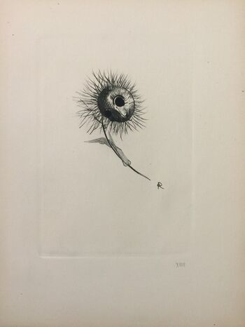 Odilon Redon | Five Butterflies (ca. 1912) | Artsy