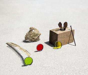 Ilán Rabchinskey, 'Fish bones, rabbit ears, metal, wood, chromatic filters', 2017