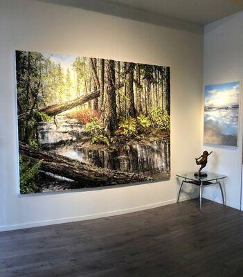 """Marleen Vermeulen, """"New Works"""", installation view"""