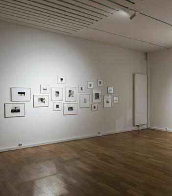 BAUHAUS, installation view