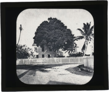 Augustus Le Plongeon, 'House with white picket fence and tree, Belize [?]', 1873-1924