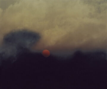 Nicholas Hughes, 'Verse I, Untitled #1, from Field'