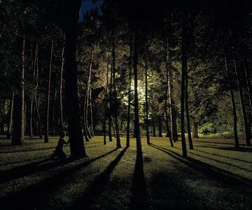 Gábor Arion Kudász, 'Rollerskater, Margit island (Green area series)', 2005