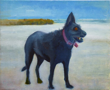Zamir Shatz, 'Kooka at Frishman Beach', 2016