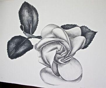 Giacomo Porzano, 'Black Rose', ca. 1972