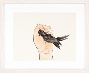 Chen Wen-Li, 'Apodidae 2'