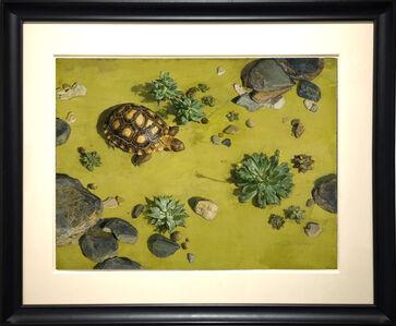 Jeffrey Ripple, 'Tortoise'