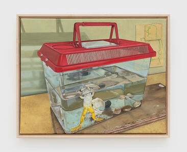 Michael Cline, 'Frog', 2020