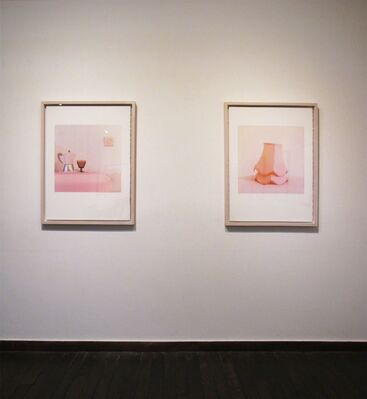 Living 295-2, installation view