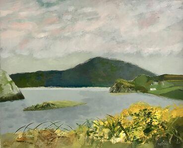 Guy Bardone, 'Les genets baie de Crookhaven - Irlande', 1980