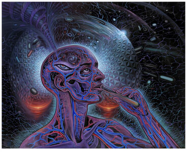 Alex Grey, 'Bicycle Day', 2012-2013