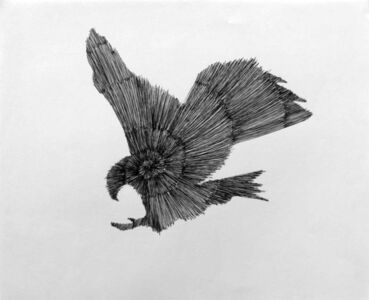 Douglas Rodrigo Rada, 'Eagle Spiral 2 ', 2017
