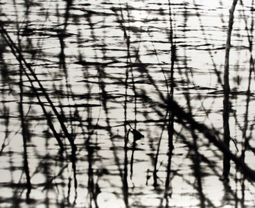 Larry Silver, 'Water #8a', 2003