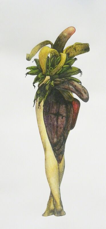 Avishek Sen, 'Legs & Plants', 2013, Drawing, Collage or other Work on Paper, Watercolor on paper, Aicon Gallery