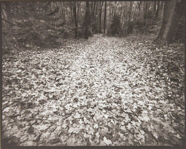Barbara Crane, 'Coloma to Covert Road', 1993/2014