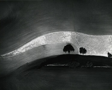 William Garnett, 'Two Trees on a Hill with Shadows, Paso Robles, CA', 1974