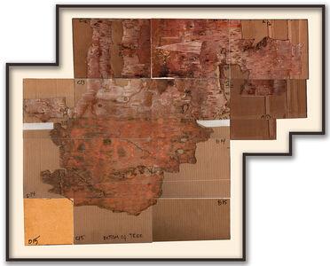Maria Elena González, 'Bark Framed #5', 2012