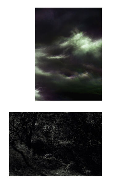 Albano Afonso, 'Constellations I and Paradises I. Diptych.', 2020