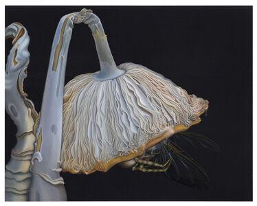 Anna Camner, 'Untitled', 2013