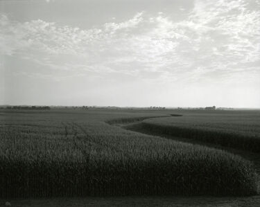 Rhondal McKinney, 'untitled, Illinois Landscape', 2009