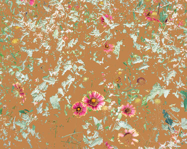 Aaron ROTHMAN, 'Wildflowers (PW1)', 2015