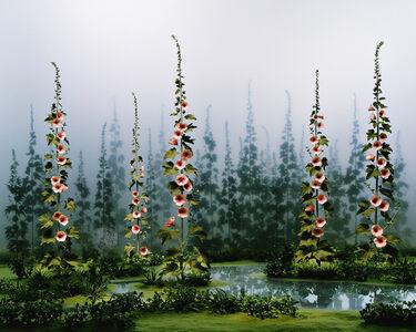 Didier Massard, 'April Garden', 2009