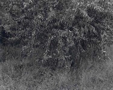 Gilbert Fastenaekens, 'Untitled #022', 1988-1996