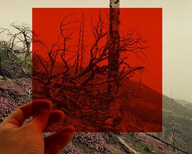 David Favrod, 'Le carré rouge', 2014