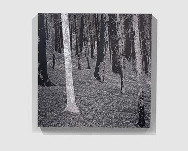 Christian Verginer, 'Moonlight Shadows', 2015