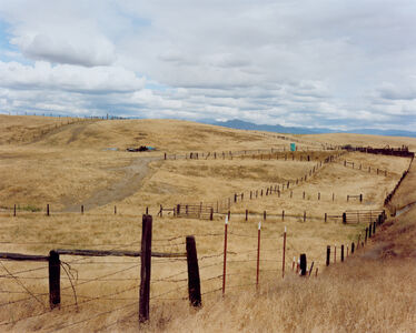 Sharon Lockhart, 'Cattle Ranch, Tulare County', 2011