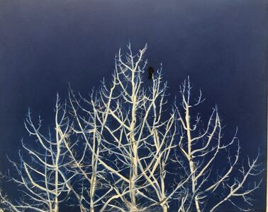 Emma Tapley, 'Trees, Bird', 2019