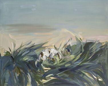 Megan McCabe, 'Wandering', 2015