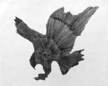 Douglas Rodrigo Rada, 'Eagle Spiral 1 ', 2017