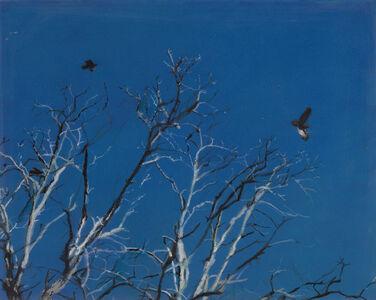 Emma Tapley, 'Tree, Bird, Moon, Sag Harbor', 2018