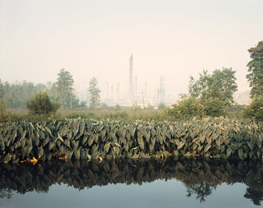 Richard Misrach, 'Roadside Vegetation and Orion Refining  Corporation, Good Hope, Louisiana', 1998