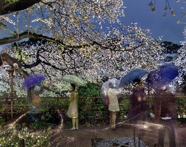 Matthew Pillsbury, 'Hanami #2, Chidorigafuchi, Thursday, April 3rd', 2014