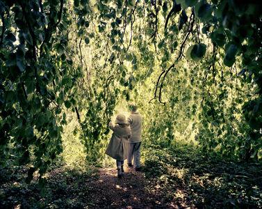 Joakim Eskildsen, 'Willow Tree, Potsdam, 2012', 2012