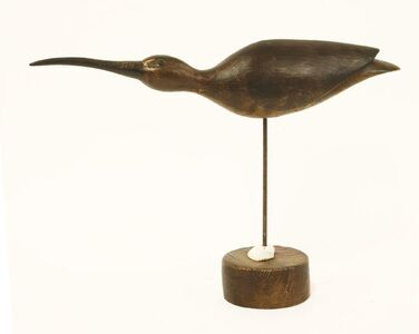 Guy Taplin, 'SMALL CURLEW POINTING'