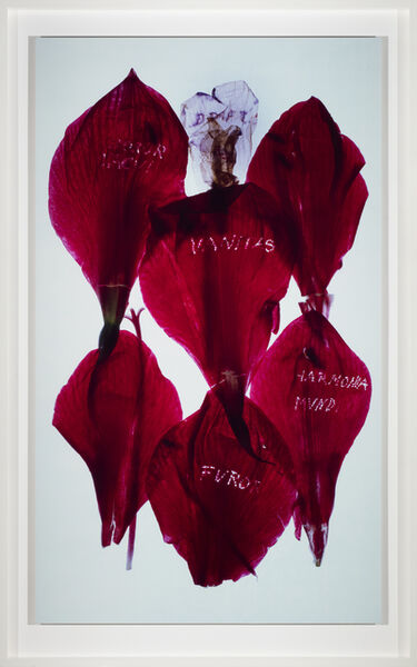 Anne and Patrick Poirier, 'Archives', 2014
