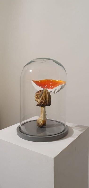 Carsten Höller, 'Multiple Mushroom Dome', 2019, Sculpture, Cast polyurethane mushroom replicas in various sizes, acrylic paint, glass discs, metal pins, vitrine glass, powder-coated metal framework, GALLERIA CONTINUA