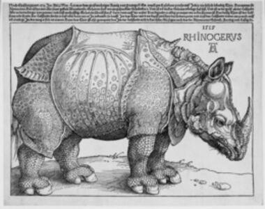 Albrecht Dürer, 'Rhinocerus', AD 1515