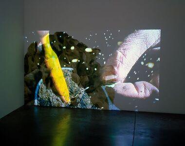 Pipilotti Rist, 'Head Salad', 2010