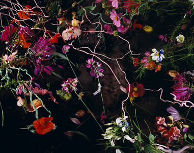 Margriet Smulders, 'Summers Lease', 2012