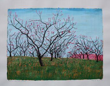 John Borden Evans, 'Peach Orchard', 2020